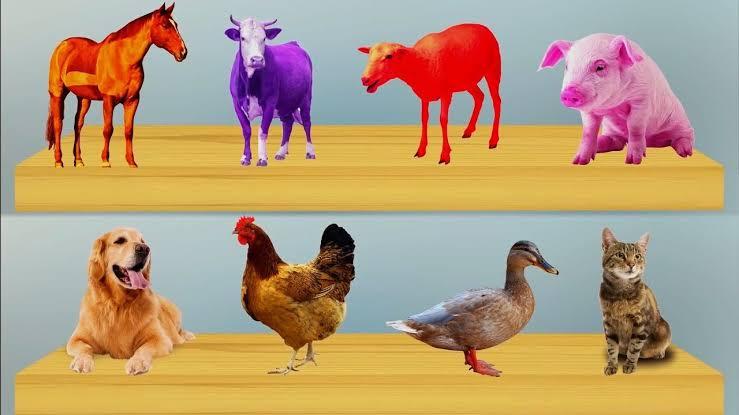 Nama hewan dalam bahasa sumbar